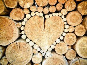 Povečanje sredstev: Spodbude za MSP za razvoj in uvajanje novih produktov v lesarstvu 4.0
